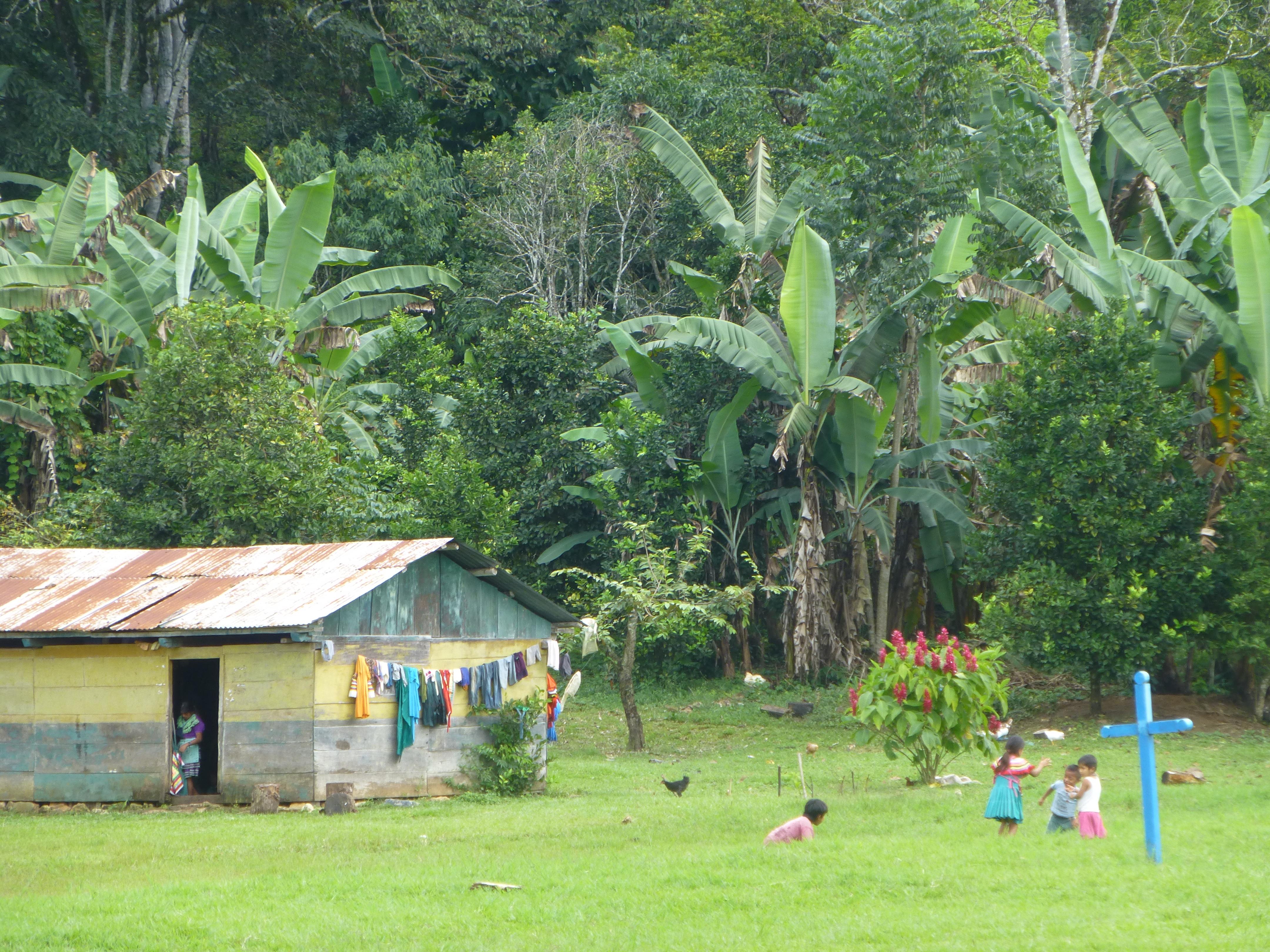 Lacandon Jungle Camping Jungle to 66 Lacandon