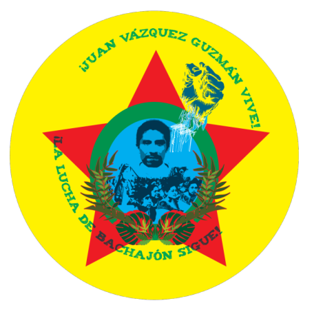Logo from the Viva Bachajón blog