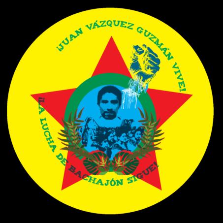 Logo from the Viva Bachajón blog