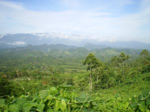 Photo of northern zone of Chiapas @ SIPAZ archive