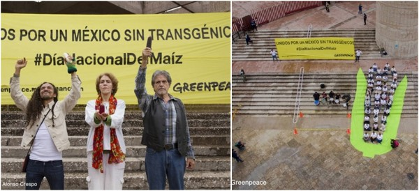Photo: Greenpeace-Mexico
