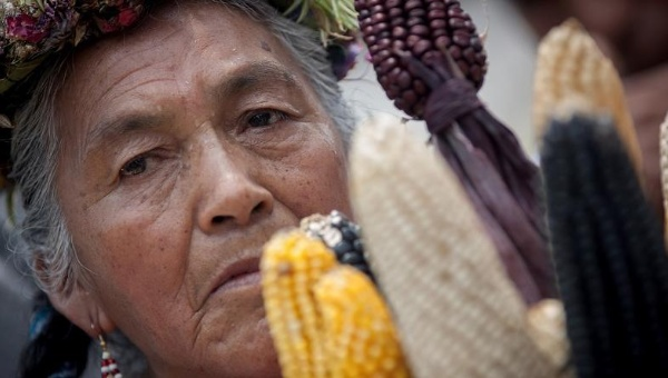 monsanto-gmo-corn-protest-mexico_crop1446041685823.jpeg_1718483346