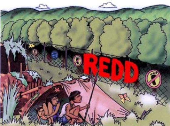 redd_red